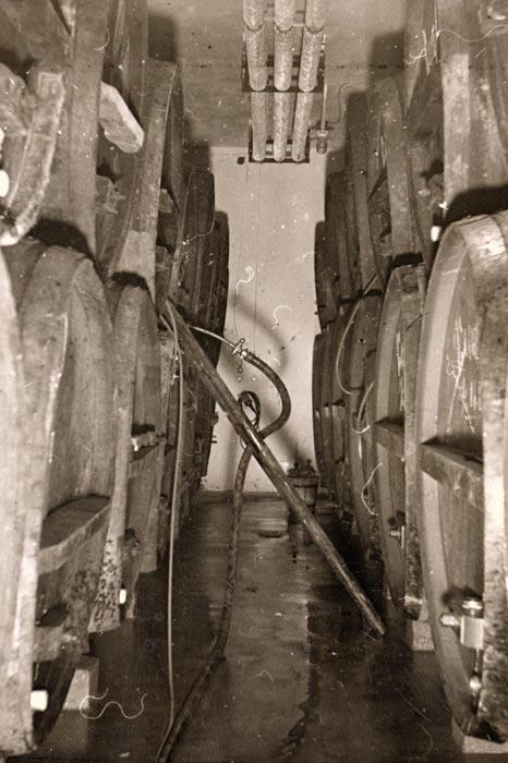 Lagerkeller mit Holzfässer im Jahre 1936